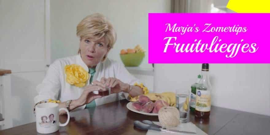Marja's Zomertip tegen Fruitvliegjes 880×440