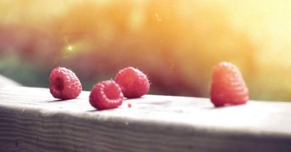 Bessen zijn goede voeding tegen kanker