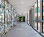 Kunst in het ziekenhuis Rijstate
