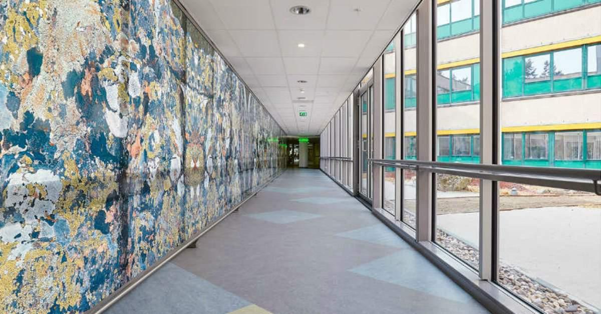 Kunst in het ziekenhuis Rijstate facebook
