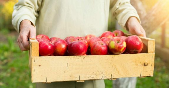 Zorgorganisaties besparen geld met verse voeding