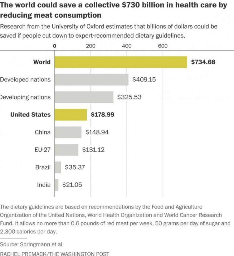 Besparingsoverzicht vlees en zorgkosten