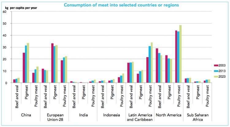 Wereldwijde vleesconsumptie