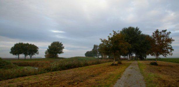 Meer Aardzee van Piet Slegers