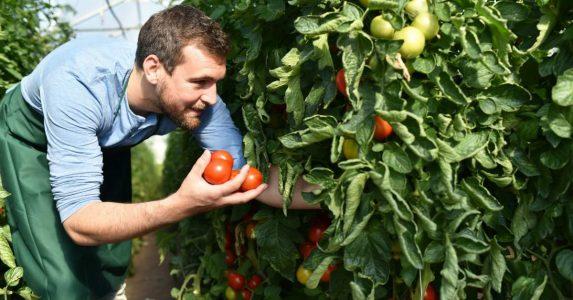Gezond en duurzaam eten voor ouderen