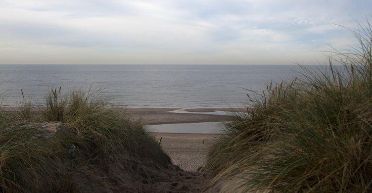 De duinen en het strand